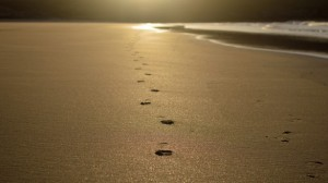 sex ed footprint